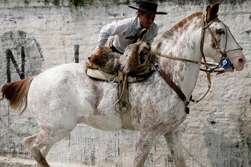 http://www.ellemmphotography.com/Images/Travel/Argentina/Mataderos_5471_A_web.jpg
