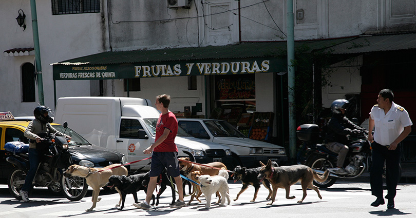 http://www.ellemmphotography.com/Images/Travel/Argentina/Villa_Crespo_4455_A_web.jpg