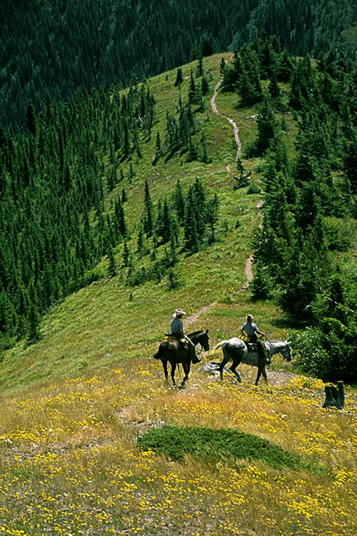 http://www.ellemmphotography.com/Images/Travel/Misc/rangers_02_A_web.jpg