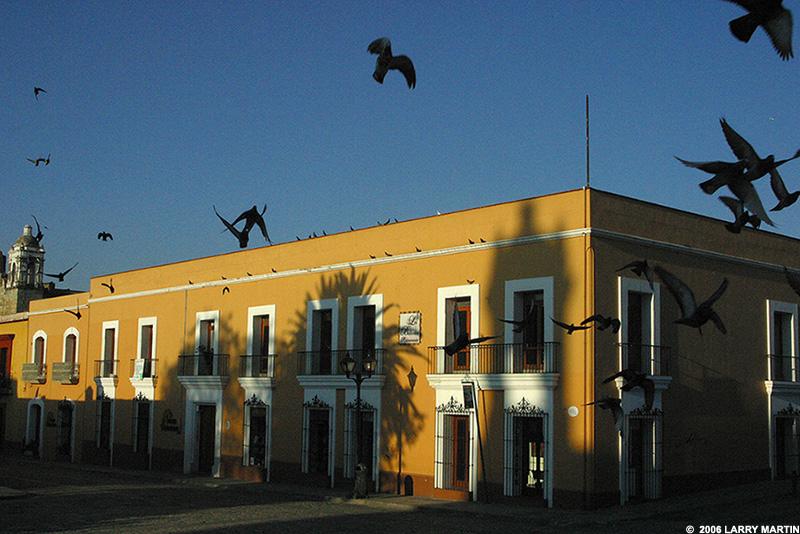 http://www.ellemmphotography.com/Images/Travel/Oaxaca/IMG_0557.jpg
